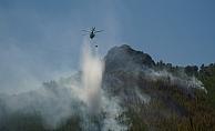 Orman yangınında 3 hektar alan kül oldu