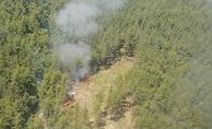 Ormanın iki ayrı noktasında başlayan yangın söndürüldü