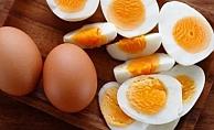 Yumurta diyeti zayıflatıyor