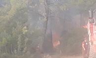 Orman yangınına 4 helikopter ve 30 arazöz müdahale ediyor