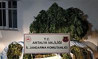 161 kilo uyuşturucu madde ele geçirildi