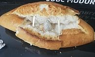 Ekmek arası uyuşturucu satışına darbe: 2 gözaltı