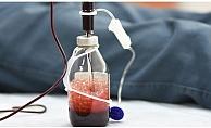 Ozon terapisi ile bağışıklık sistemini güçlendirebilirsiniz