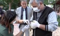 Rus turistten sahilde bulduğu yaralı martıya yardım eli