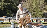 Arıcılar yeni sezona hazırlanıyor