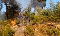 Alanya'da yerleşim yerlerine yakın bölgede yangın paniği!