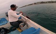 Amatör balıkçı, ağa takılan Caretta Caretta'yı 'gülüm, bir tanem' diyerek kurtardı