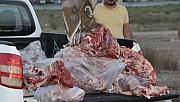 350 kilo et imha edildi