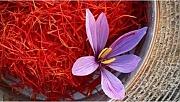 Mucizevi bitkinin faydaları saymakla bitmiyor