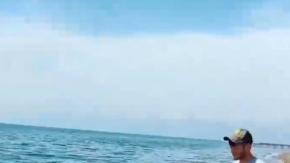 Caretta caretta ölüsü sahile vurdu